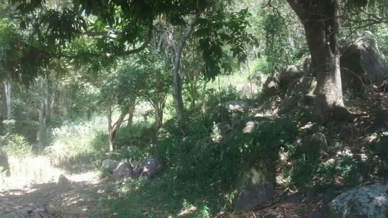 Excelente Sítio de 38.000 metros quadrados em Pedra de Guaratiba.